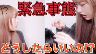 撮影中に弟が大怪我…お姉ちゃんパニックw【ドッキリ】