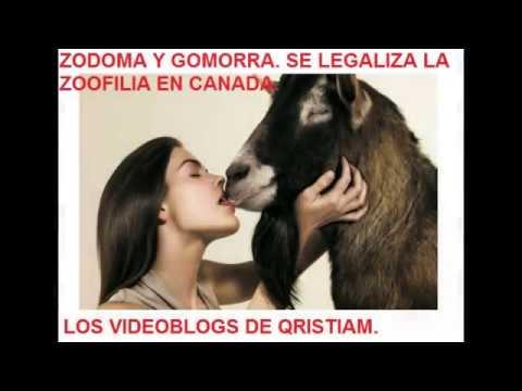 ZODOMA Y GOMORRA CANADA LEGALIZA LA zoofilia