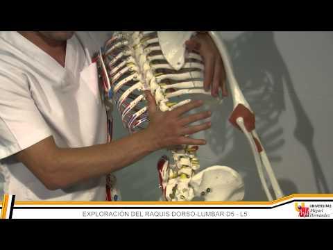 Osteocondrosis de los remedios populares de la columna lumbar