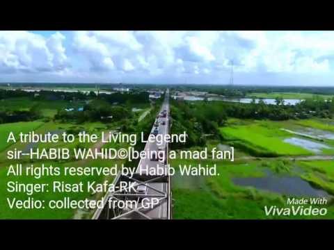 Shopno jabe Bari(2)-Biggest Tribute to Habib Wahid|cover by Risat Kafa|all rights by Habib wahid&GP