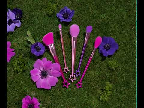 Pretty Things Fairy Wings Brush Set