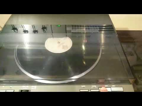 Technics SL  DL1