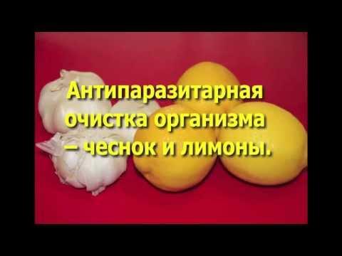 Гомеопатическое лечение лямблий и