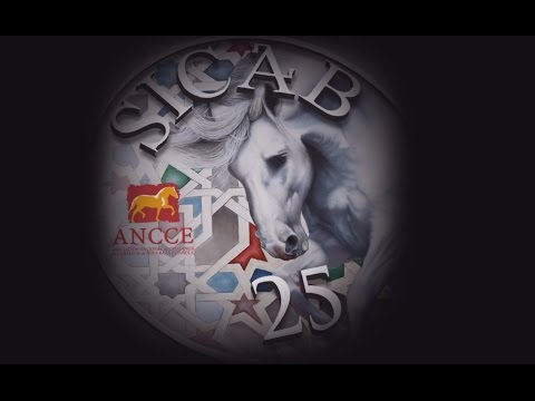 ANCCE | Video commemorating 25 years of SICAB history