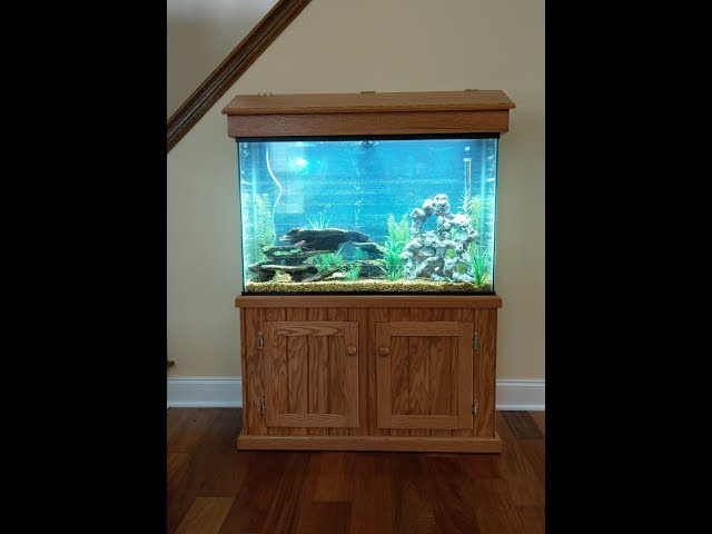 Woodworking : DIY Fish Tank Stand // How-To Part 1