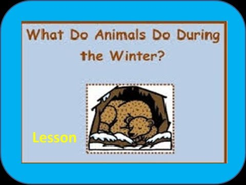 Hibernating and Migrating Animals -for Kids of Kindergarten,Preschoolers,Toddlers