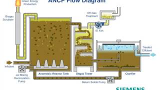 Siemens ANCP Animation