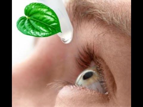 Video TERBUKTI !! Daun Sirih Sebagai Obat Herbal Sembuhkan Mata Bintitan
