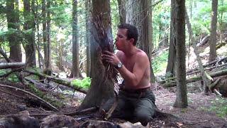 Surviving The Wild S01 E10 - Alone