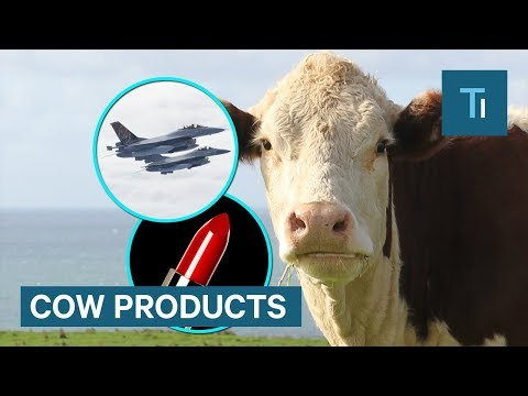 Products made with cow parts