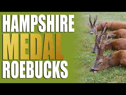 Hampshire Medal Roebucks