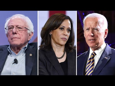 Bernie Refuses To Call Out Kamala's Wall St Ties, Pivots To Trump Bashing