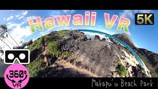ひとくちハワイ旅VR
