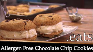 chocolate chip cookie recipe with vanilla pudding powder
