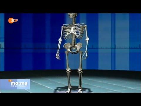 Starke Schmerzen im unteren Rücken und Schwere