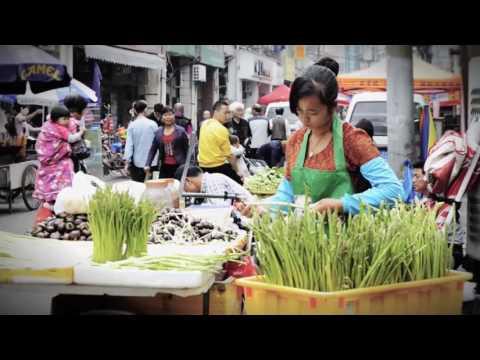 Video Discover Xiamen