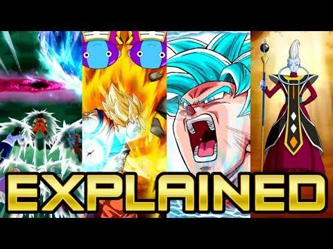 GUARANTEED NEW UNIT?! ALL NEW SUMMONING ANIMATIONS EXPLAINED! | DBZ Dokkan Battle