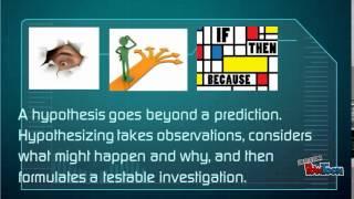 Hypothesis vs. Prediction