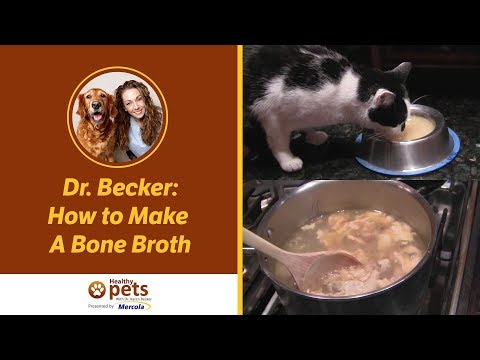 Dr. Becker Demonstrates How To Make A Bone Broth