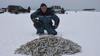 Зимняя рыбалка в де кастри форум