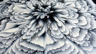 (386) BLACK & WHITE ~ CUP BOTTOM Acrylic Pour FLOWER Painting ~ MUST SEE!!! ~ Paint #WithMe
