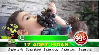 17 fidan reklam 16dk