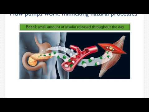 Neutral Insulin es