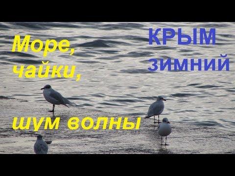 Крым зимний, Пляж, Набережная Судака. Море, чайки, шум волны 31.01.2019