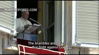 Papina poruka nakon molitve Angelusa