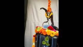 whatsapp viral videos | Real Video Har Har Mahadev | INDIAN FUNNY VIDEOS INDIA  #jeeten