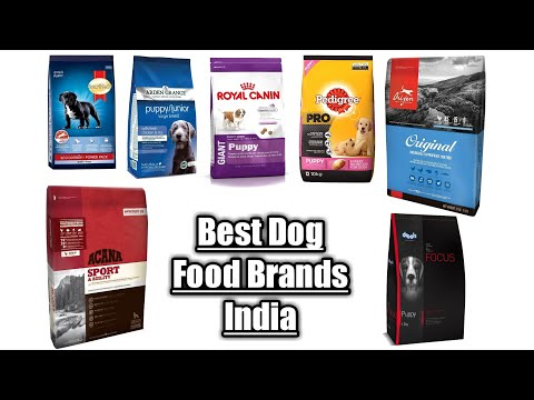 Best Dog Food Brands In India In Detail #BarodaPetWorld