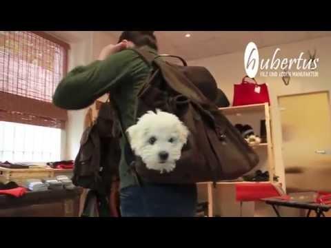 Hundetasche und Hunderucksack der Hubertus GmbH Filz und Loden Manufaktur