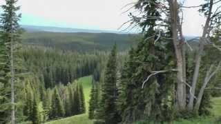 Mount Washburn, Yellowstone National Park