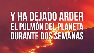 SI a la Amazonia, NO a Bolsonaro!