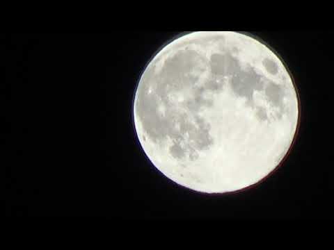 Соловей и Луна