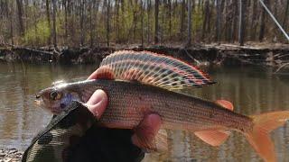 Рыбалка в приморском крае на реке арсеньевка