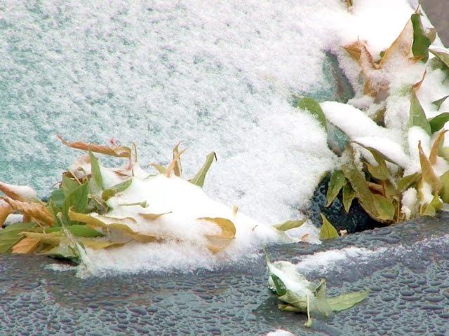 Ангарск засыпало снегом