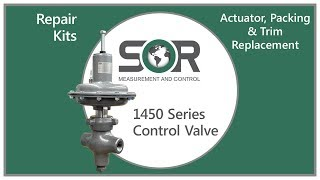 1450 Series Repair Kits - Actuator, Packing, & Trim Replacement