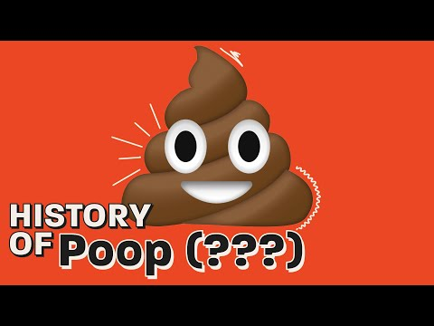 How Toilets Changed the World: History of Pooping