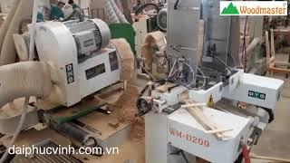 Woodmaster   MÁY LÀM MỘNG 2 ĐẦU CNC WM-D200CNC