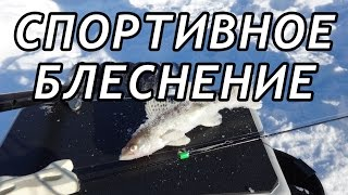 Зимняя рыбалка теория
