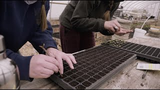 Seed Planting in Indiana