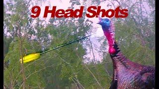 Turkey HEAD SHOTS, BOW!!