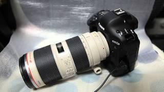 Canon 1Dx 開封の儀と試し撮り