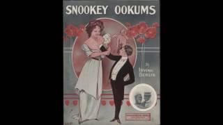 Snookey Ookums (1913)