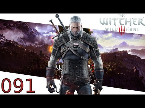 Lösungsbuch - Let's Play The Witcher 3 - Wild Hunt #091 - Witcher 3