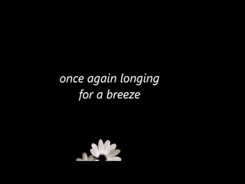 if - elsa kopf lyrics (one more happy ending ost)