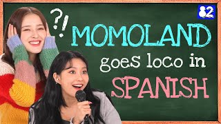 Which Momoland member secretly dreams in Spanish? [Tongue Twister]
