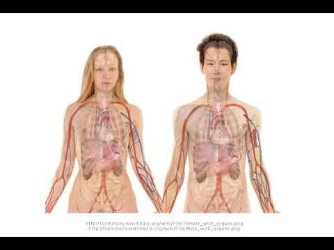 Dibazolum con inyecciones de papaverina alta presión Dosis