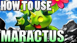 Maractus  - (Pokémon) - Pokémon How To Use: Maractus! Maractus Moveset - Pokemon Omega Ruby and Alpha Sapphire / X&Y Guide